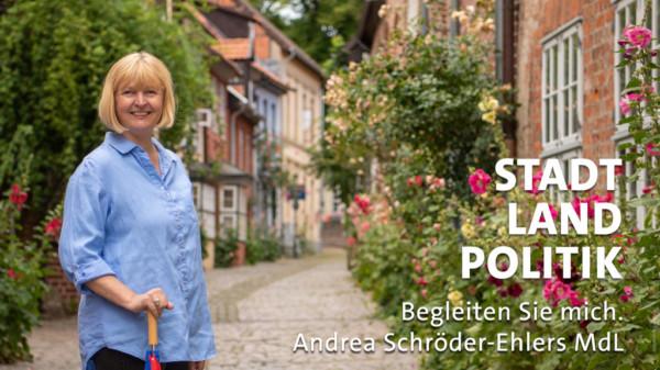 Andrea Schröder-Ehlers MdL in der Altstadt von Lüneburg