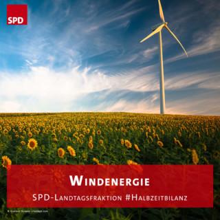 Windrad in Sonnenblumenfeld